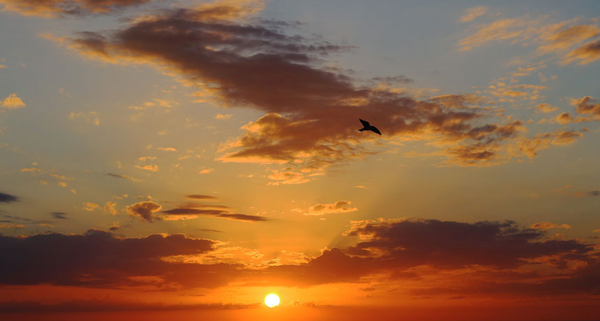 Relax oltreoceano, mare e natura: vacanze in Messico