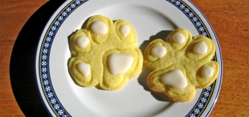 Biscotti per cani fatti in casa: alcune indicazioni utili
