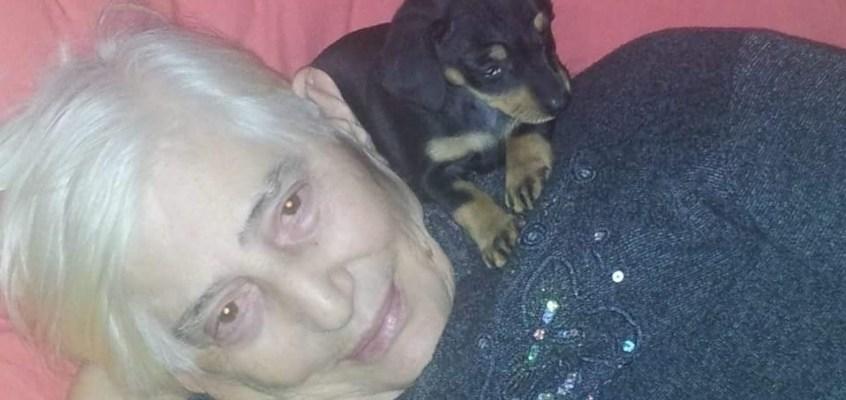 Animali domestici e anziani: meno solitudine e più salute