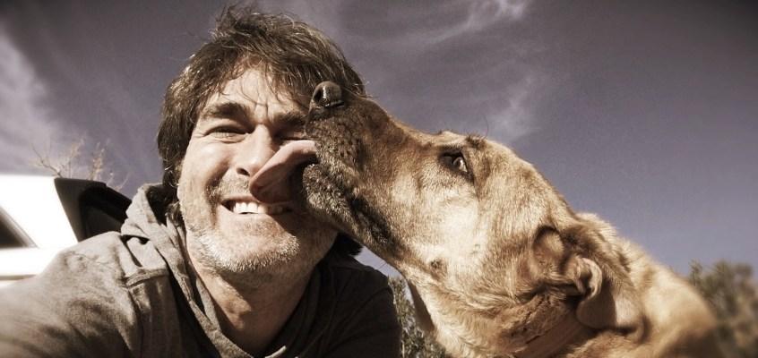 Perchè i cani leccano? Scopriamone il significato
