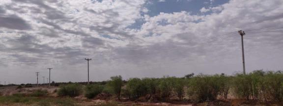 Linea Media Tensión 33 kV- Las Tuscas - Valle Fertil