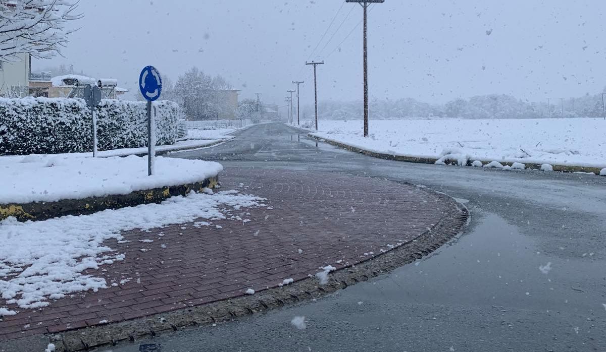 ΠΙΕΡΙΑ - Στα λευκά η Κατερίνη! Πυκνή χιονόπτωση σε όλο το νομό