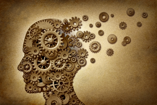 Le handicap mental et les troubles mentaux: Dans l'optique des droits fondamentaux