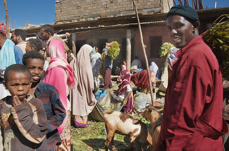 Does economic growth in Sub-Saharan Africa reduce poverty?