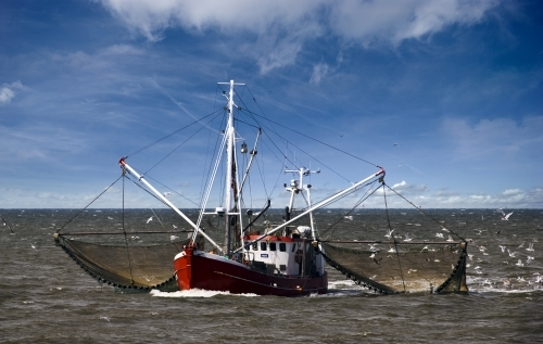 Discarding fish under the Common Fisheries Policy: Towards an end to mandated waste