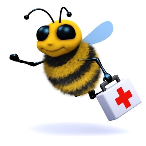Les abeilles dans l'UE: un bilan de santé inquiétant