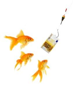 Goldfish in aquarium on white background