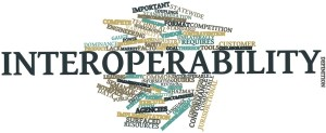 Word cloud for Interoperability