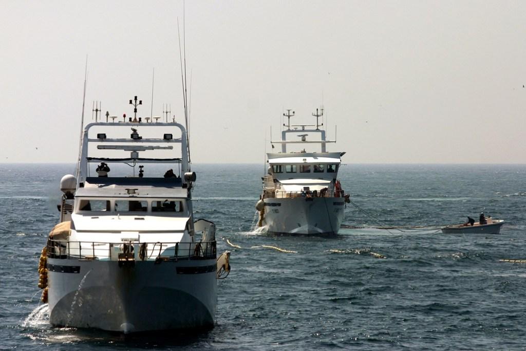 New rules for managing the EU external fishing fleet [EU Legislation in Progress]
