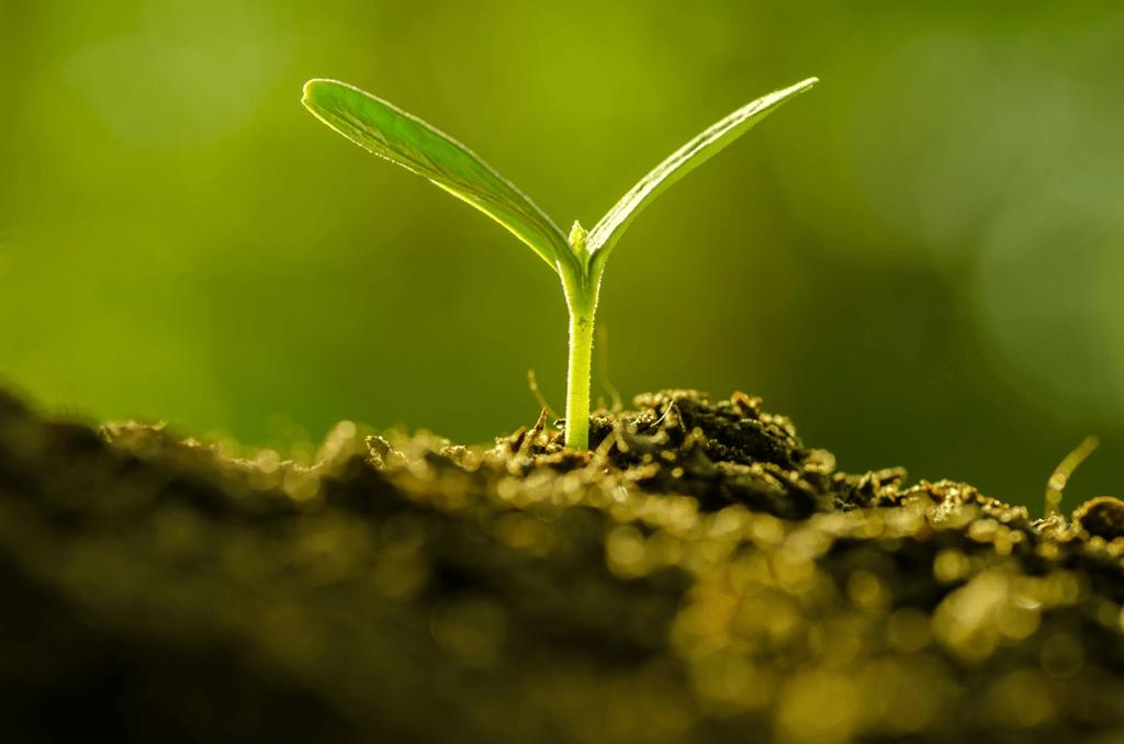 EU fertilising products [EU Legislation in Progress]