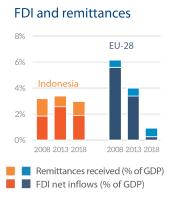 FDI and remittances