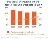 Tunisia total unemployment and female labour market participation