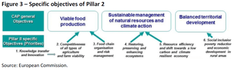 Specific objectives of Pillar 2