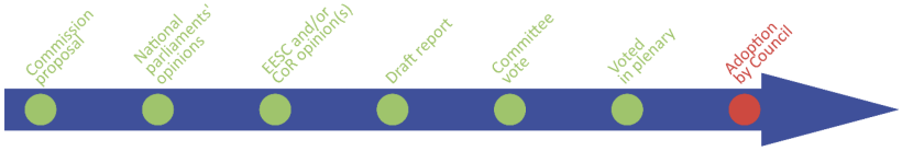 timeline 7 steps - adoption by council