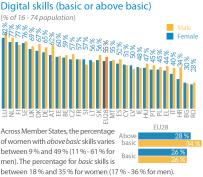 Digital skills (basic or above basic)
