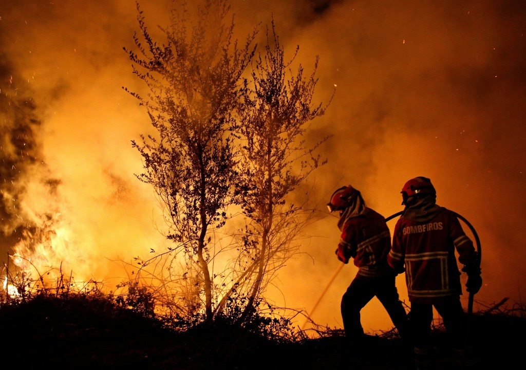 People affected by forest fires [What Europe does for you]