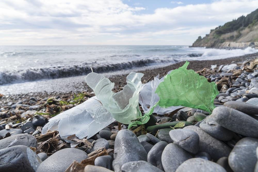 Single-use plastics and fishing gear: Reducing marine litter [EU Legislation in Progress]