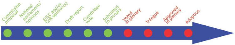 timeline-10 steps-voted in plenary