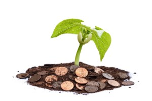 Plant Growing Out Of Soil And Coins