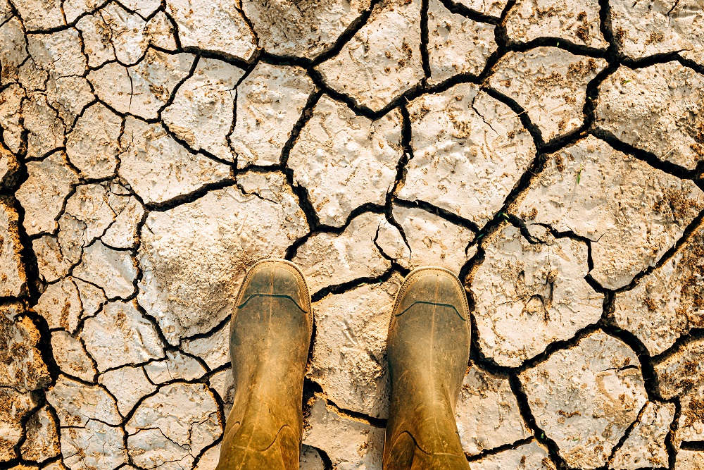 Climate change [What Think Tanks are thinking]