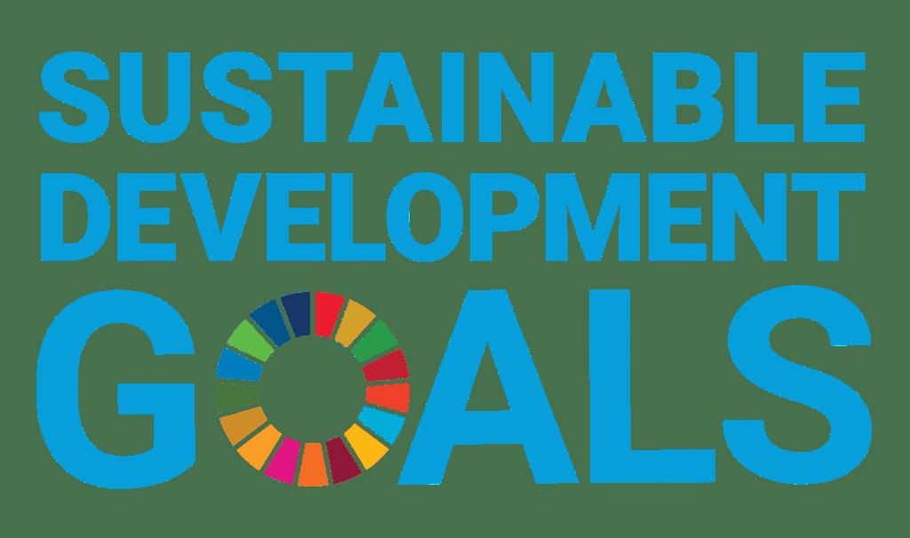 Understanding the Sustainable Development Goals