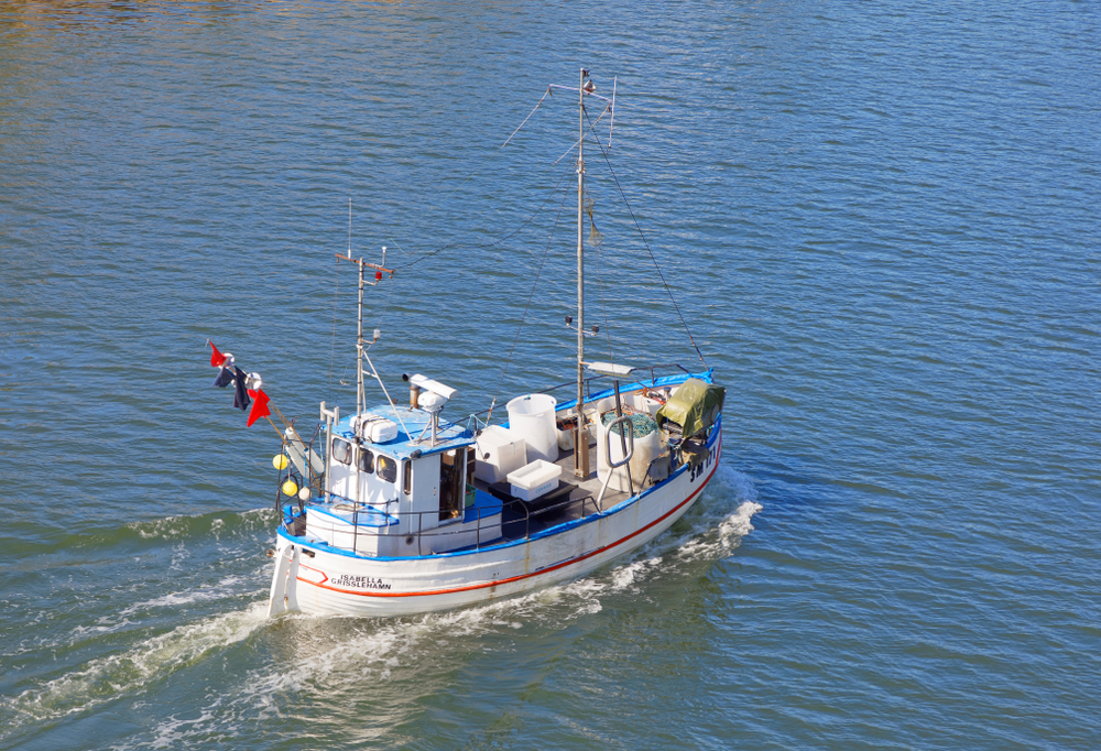 Support for fishermen affected by the eastern Baltic cod closure [EU Legislation in Progress]