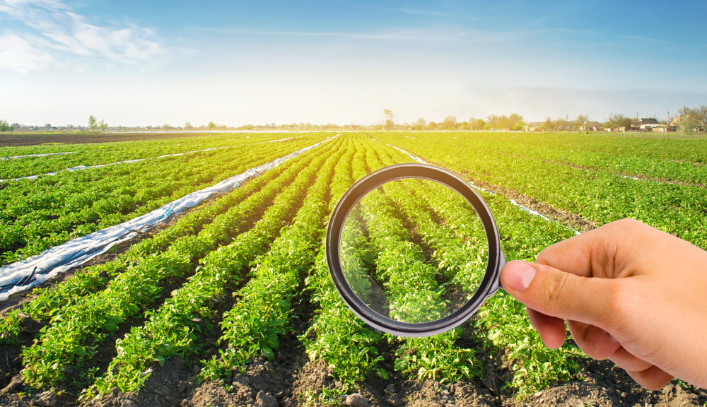What if crop protection were environment-friendly? [Science and Technology podcast]