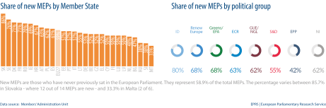 Share of new MEPs by Member State - by political group