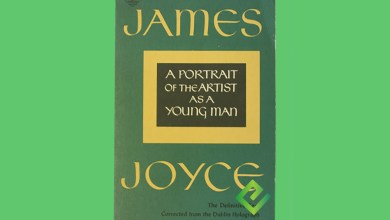 Photo of A Portrait of the Artist as a Young Man pdf download