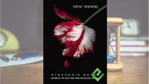 Twilight new moon book PDF