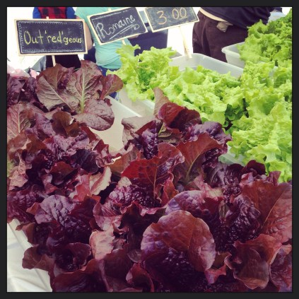 Fresh Endeavors hydroponically-grown lettuce