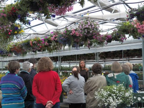 Kelly explaining how to group your plants