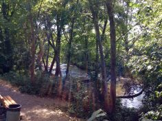 Bear Creek Greenway, Medford