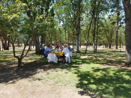 The backyard luncheon setting at Maxine's