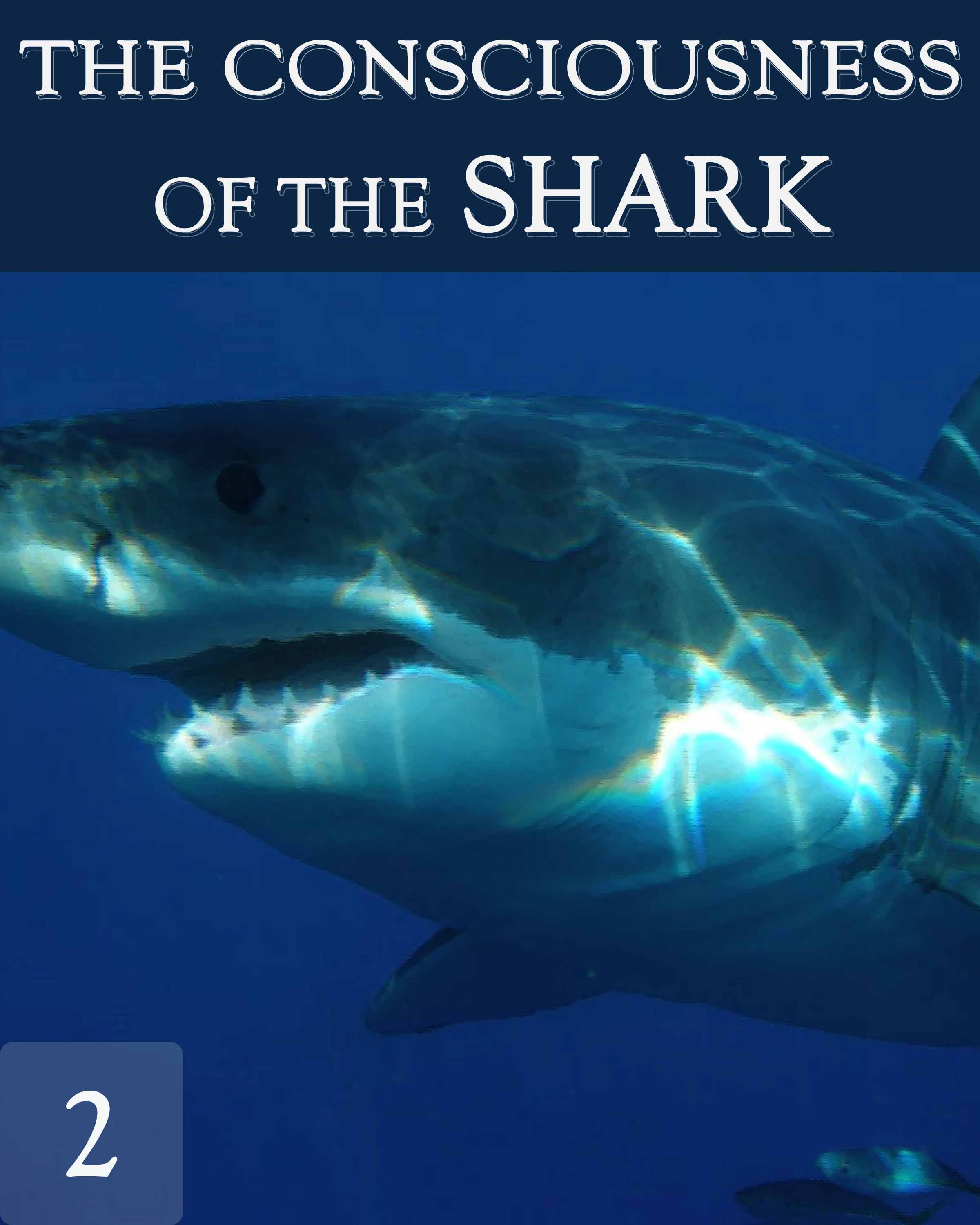 The Consciousness Of The Great White Shark
