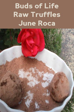 Feature_thumb_june-roca-buds-of-life-raw-truffles