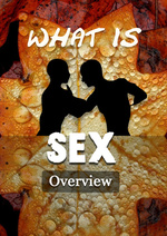 Feature_thumb_what-is-sex-overview