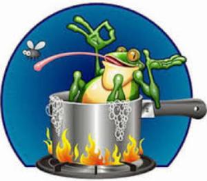 080818 Boiling Frog