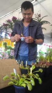 'STAND MONSTER'. Warga Kota Pontianak, Yopi Kolisen, memamerkan tanaman karnivora yang dipajang di stand miliknya dalam pameran Festival Holtikultura se Kalimantan 2015, di Museum Negeri Kalbar, Sabtu (19/12). ISFIANSYAH