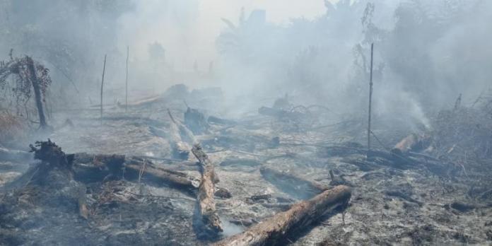 JADI ARANG. Kebakaran lahan di Gang H. Bahrin Jalan Parit H Husin 2, Pontianak Tenggara, Senin (23/7). Bangun Subekti-RK