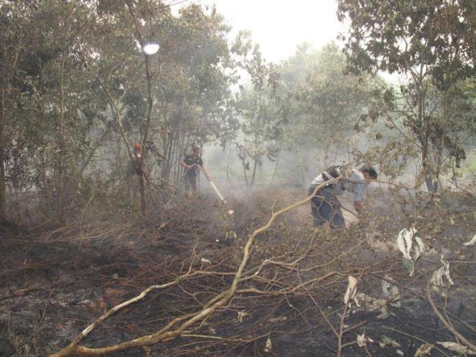 PADAMKAN API. Petugas memadamkan api kebakaran lahan di salah satu wilayah Kota Pontianak, kemarin. Dok