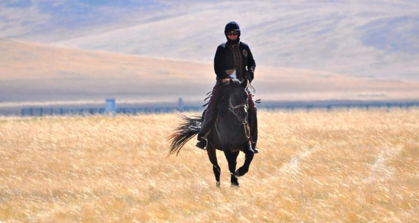 learning to ride horses in Mongolia