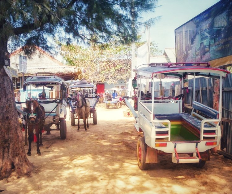 A couple of colorful horse carriages on the Gili Islands. A hard life for the ponies in paradise