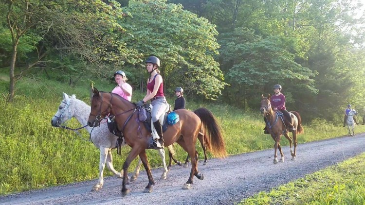 Endurance riding and the people involved in it changed my life.