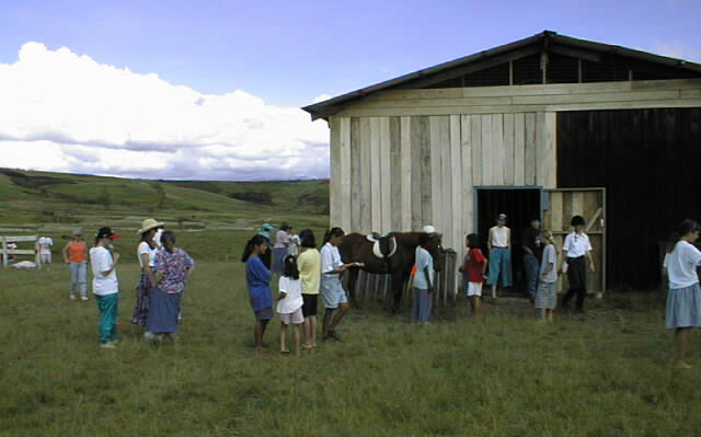 """An old photo of the """"barn"""" for the horse food and tack in Papua New Guinea"""