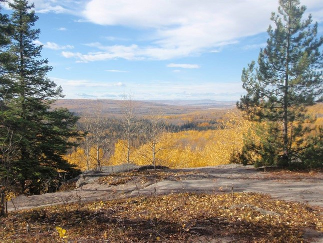 A beautiful view over a valley in Canada while trail riding on horseback