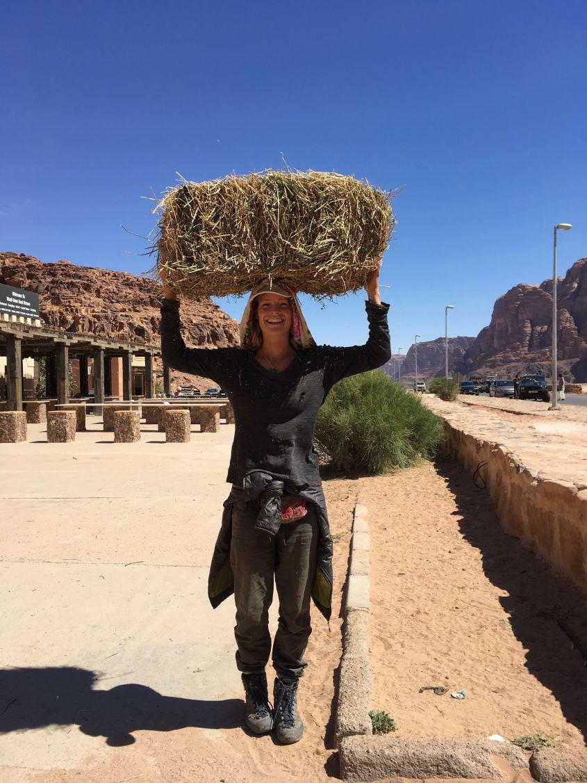 Buying hey in Wadi Rum in Jordan to feed my Donkey