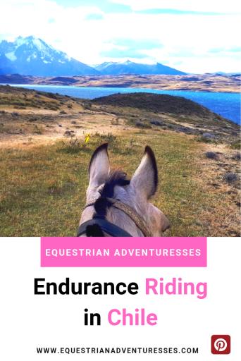 Endurance riding Chile