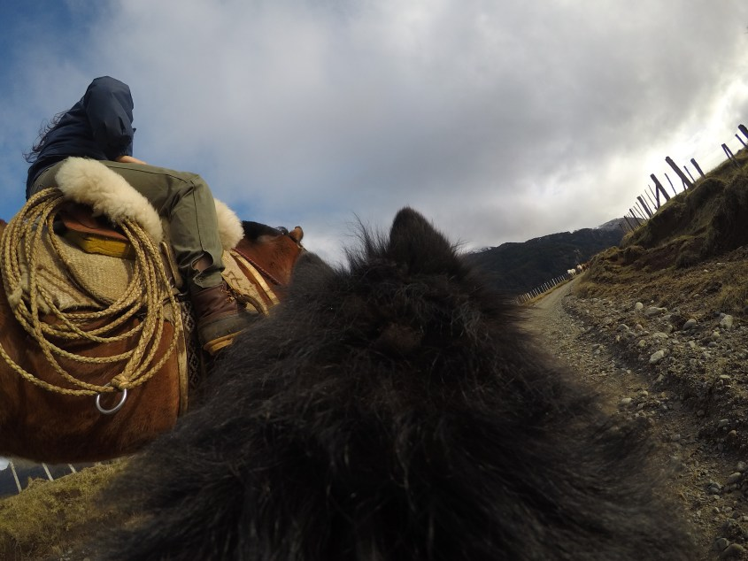 Life in Patagonia is hard, so we seek trusty companions in horses and dogs