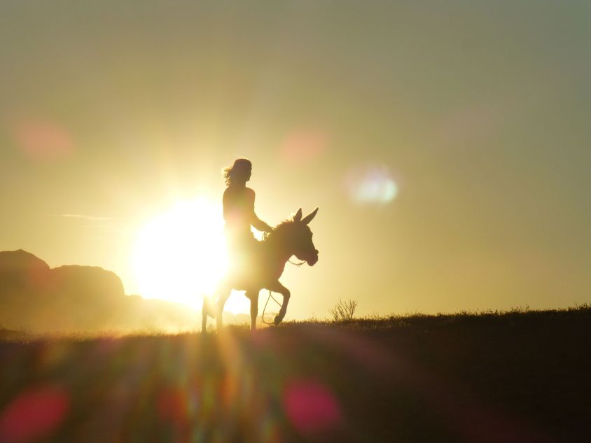 riding into the sunset on the Jordan Trail with a donkey